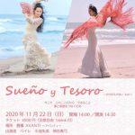 """<span class=""""title"""">ライブ情報 11/22(日)Sueño y Tesoro 〜かけがえのない もの〜</span>"""